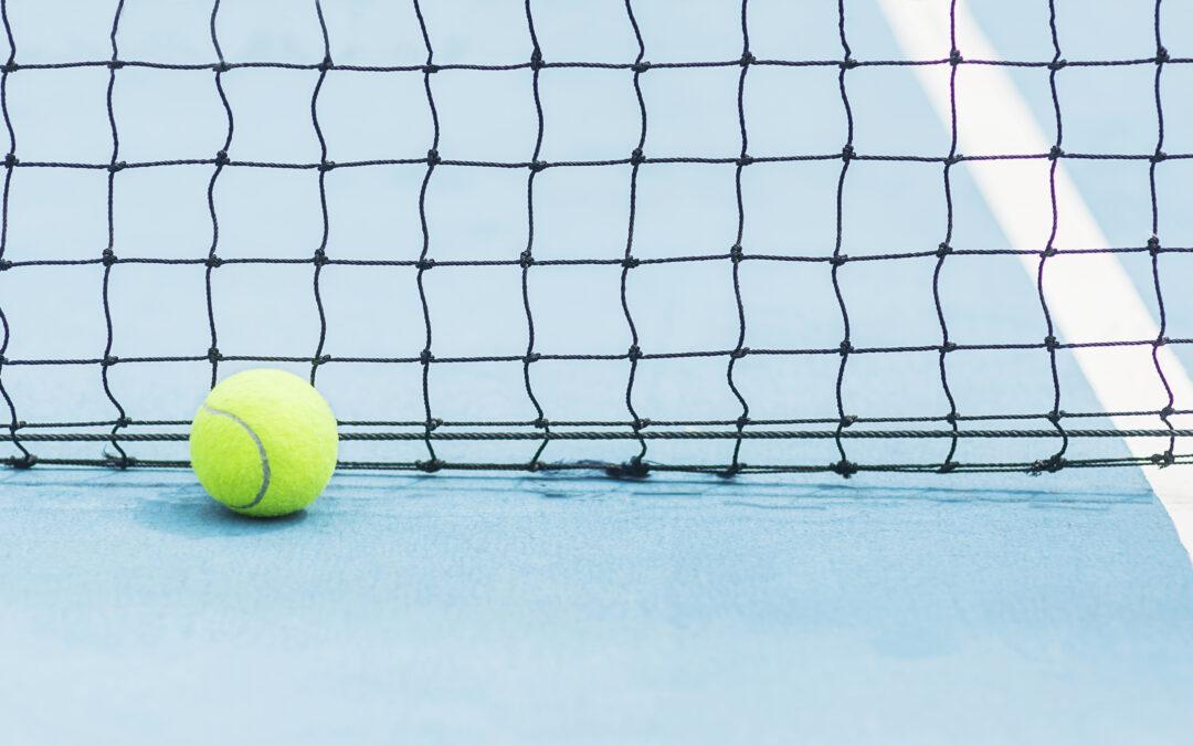 Badminton er en skøn sport – men hvad er det for en sport?